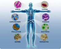 immunityguy.jpg
